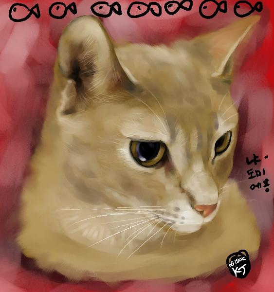 고양이 도미